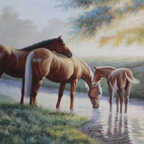 Кони на водопое 11
