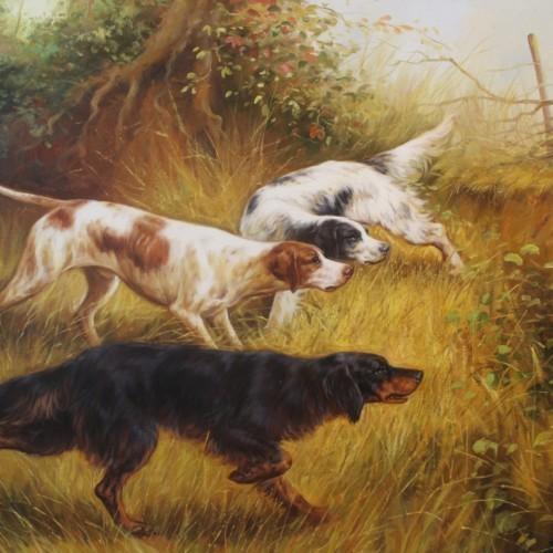 Охотничьи собаки 13