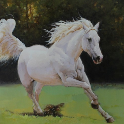 Выгул лошади 15