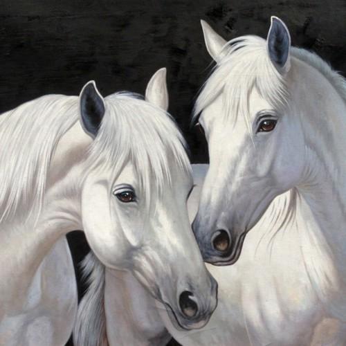 Белые лошади 19