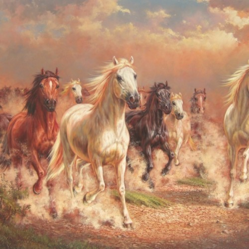 Табун лошадей 24