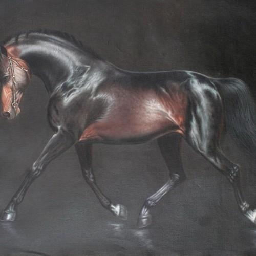 Гнедой конь 27