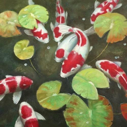 Красно-белые рыбы в пруду 29