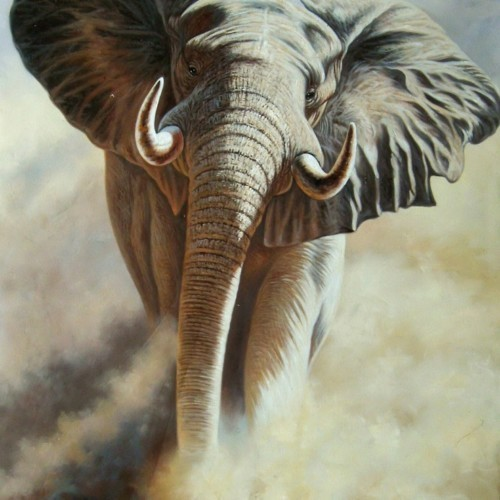 Слон в туманной дымке 38
