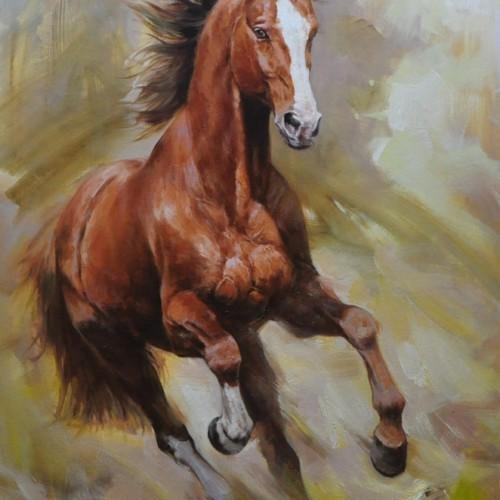 Бег лошади 41