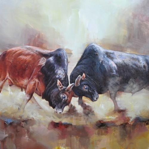 Два быка в схватке 43