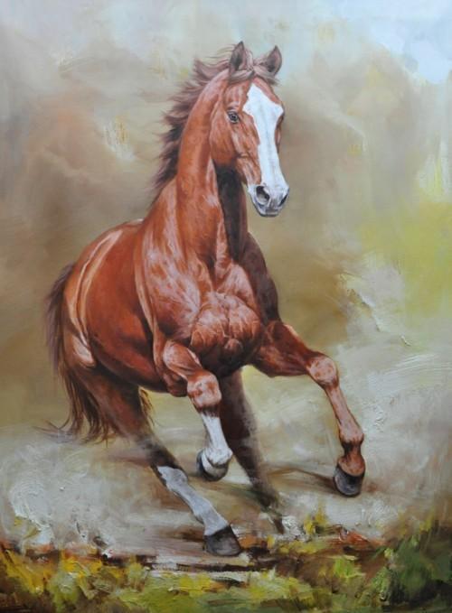Конь на воле 46