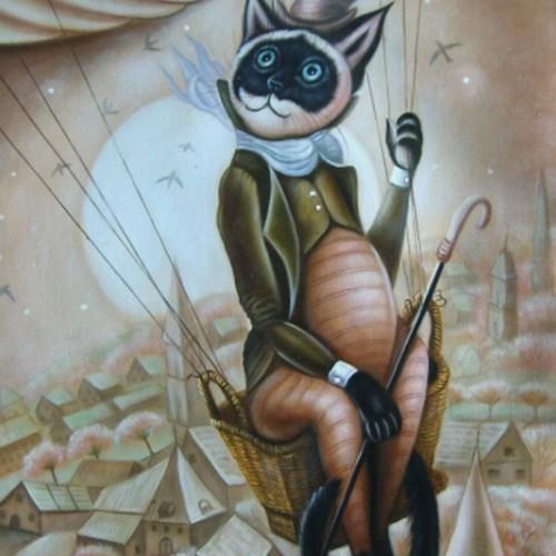 Кот в полете над городом 113