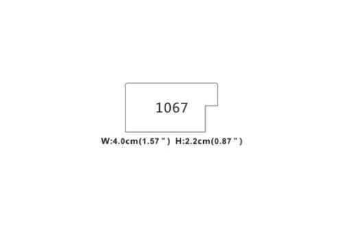 1067-V-01ECM