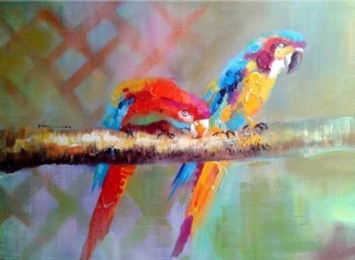 Попугаи 609