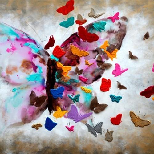 Бабочки 677
